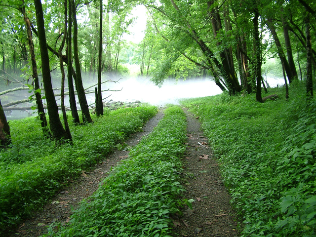 road-to-the-river-1563413-640x480